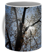 Skylight Coffee Mug
