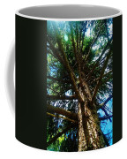 Skyward Spruce Coffee Mug