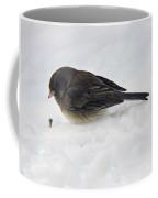 Slate-colored Junco Coffee Mug
