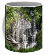Slatebrook Falls Coffee Mug