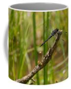 Slaty Skimmer Sunning Coffee Mug