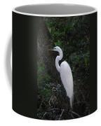 Sleek And Dressed To Please Coffee Mug