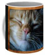 Sleeping Abby Framed Coffee Mug