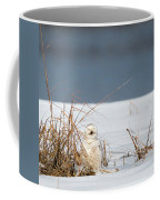 Sleeping Beauty Square Coffee Mug