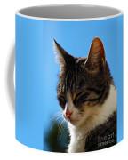 Sleeping In The Sun Coffee Mug