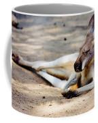 Sleeping Kangaroo Coffee Mug