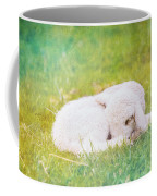 Sleeping Lamb Green Hue Coffee Mug