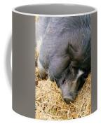 Sleeping Sow Coffee Mug