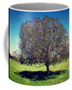 Sleeping Tree  Coffee Mug