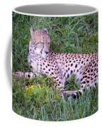 Sleepy Cheetah Coffee Mug