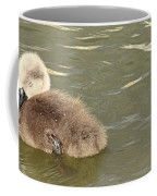 Sleepy Cygnet Coffee Mug