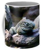 Sleepy Iguana Coffee Mug