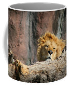 Sleepy Lion Coffee Mug