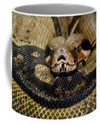 Sleepy Snake Coffee Mug