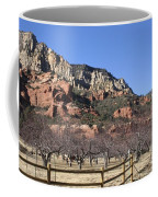Slide Rock Coffee Mug