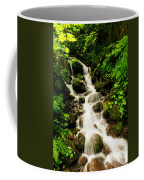 Sliding Over The Rocks Coffee Mug