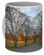 Sloan Park Sunset Coffee Mug