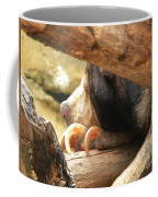 Sloth Bear Coffee Mug