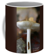 Slugs And Mushrooms Coffee Mug