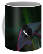 Small Black Butterfly Coffee Mug