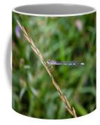 Small Blue Dragonfly Coffee Mug