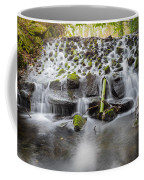 Small Cascade In Marlay Park Coffee Mug