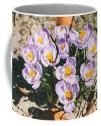Small Crocus Flower Field Coffee Mug