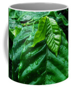 Small Leaves With Water Drops Coffee Mug