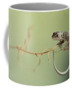 Small Lizard Sitting On The Branch Coffee Mug
