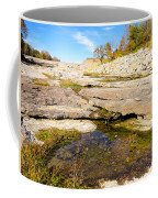 Small Pond Devonian Fossil Gorge Coffee Mug