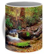 Small Waterfall And Stream 2 Coffee Mug
