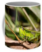 Smaragd-green Grasshopper Coffee Mug