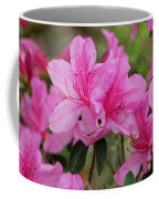 Smiling Azalea  Coffee Mug