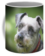 Smiling Schnauzer Coffee Mug