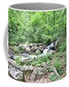 Smith Creek Downstream Of Anna Ruby Falls - 2 Coffee Mug