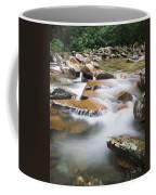 Smokey Mountain Creek Coffee Mug by Adam Romanowicz