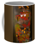 Smoky Mountain Color II Coffee Mug