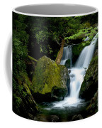 Smoky Mountain Falls Coffee Mug