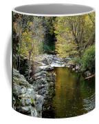 Smoky Mountian River Coffee Mug by Sandy Keeton
