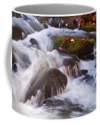 Smoky Mtn Stream - 429 Coffee Mug