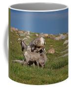 Snack Times' Over Coffee Mug