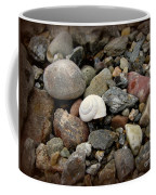 Snail Among The Rocks Coffee Mug
