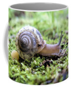 Snail On Billy Goat Trail Coffee Mug
