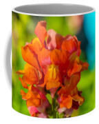 Snapdragon Flower Blurred Background Coffee Mug