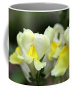 Snapdragons Group Of Yellow Cream Coffee Mug