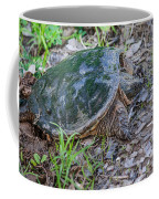 Snapper Eggs Coffee Mug