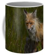 Snarl Coffee Mug