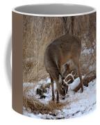 Sniffing Stag Coffee Mug