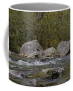 Snoqualmie River Coffee Mug