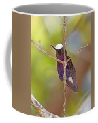 Snow Cap 1 Coffee Mug